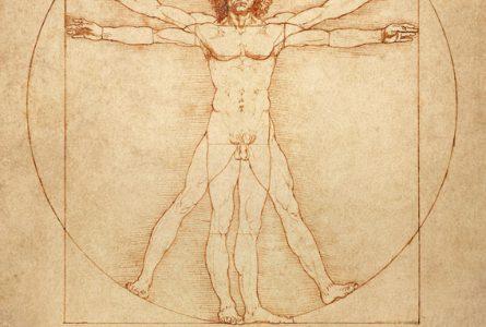 "The famous anatomical drawing ""Vitruvian Man"" (Uomo vitruviano) by Leonardo da Vinci."